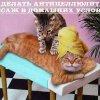 Как делать антицеллюлитный массаж в домашних условиях (2011)